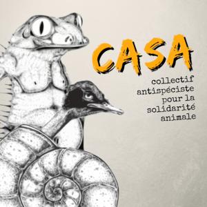 Logo du CASA, le collectif antispéciste pour la solidarité animale